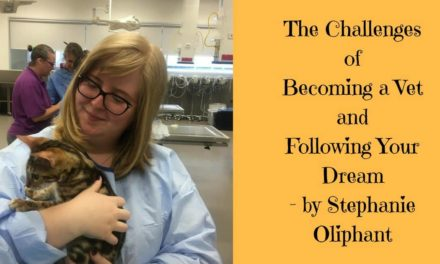 The Challenges of Becoming a Vet and Following Your Dream – by Stephanie Oliphant