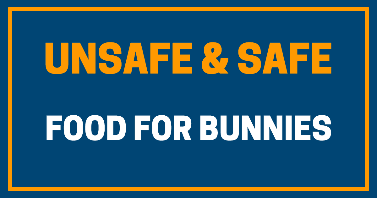 Unsafe & Safe Food for Bunnies