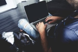 dog and man on a laptop