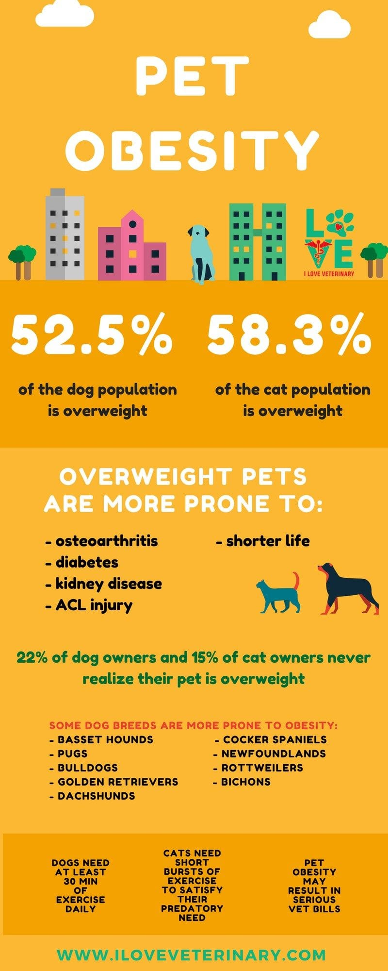 pet obesity2 1 I Love Veterinary - Blog for Veterinarians, Vet Techs, Students