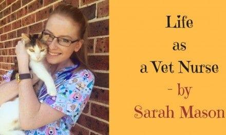 Life as a Vet Nurse – by Sarah Mason