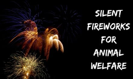 Silent Fireworks for Animal Welfare