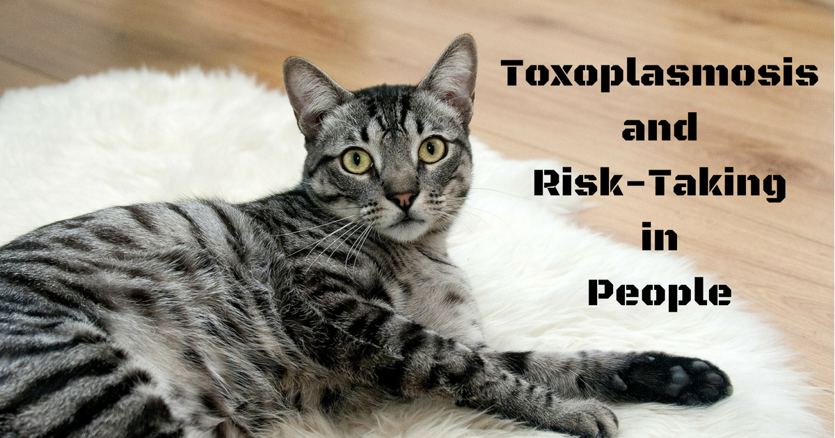 Toxoplasmosis and Risk-Taking in People