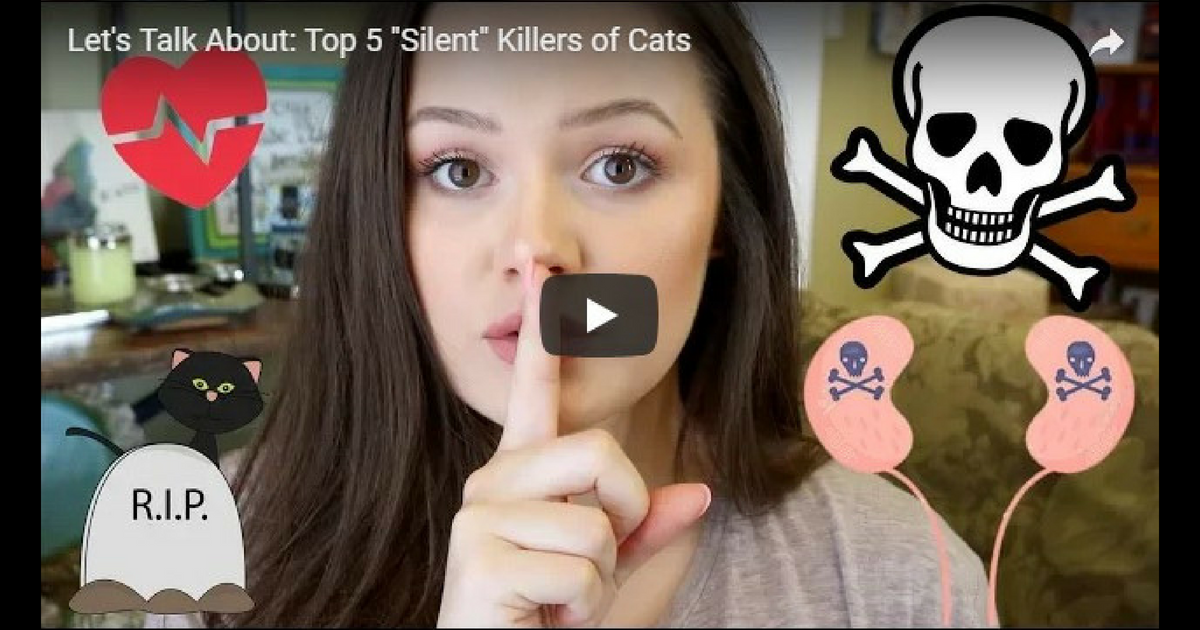 """Let's Talk About: Top 5 """"Silent"""" Killers of Cats – Video by Victoria Birch"""
