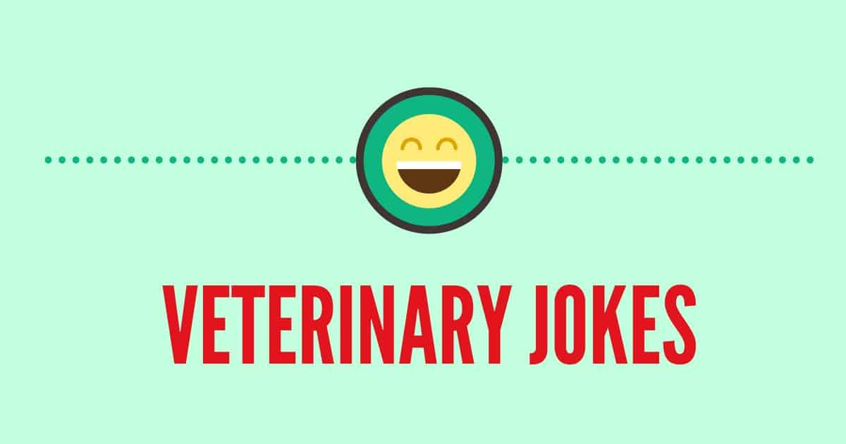 vet jokes cover image