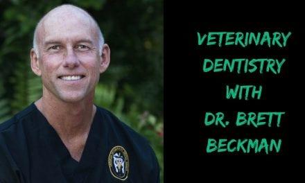 Veterinary Dentistry with Dr. Brett Beckman