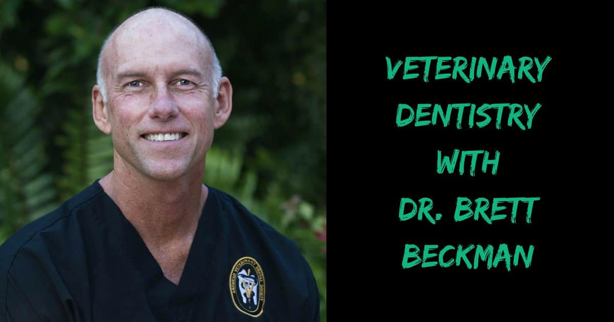 Veterinary Dentistry with Dr. Brett Beckman