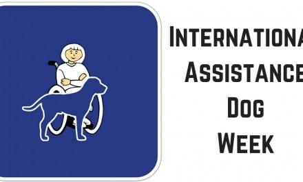 International Assistance Dog Week – August 5-11