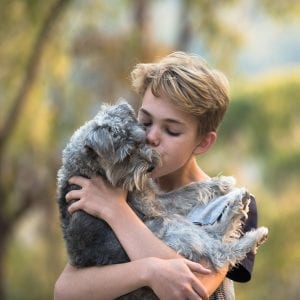 boy, dog, nature, hug, love