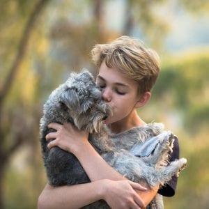 boy, dog, nature, hug, love