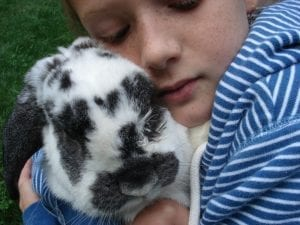 rabbit and a girl