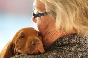 woman, lady, grandma, dog, puppy, hug, love