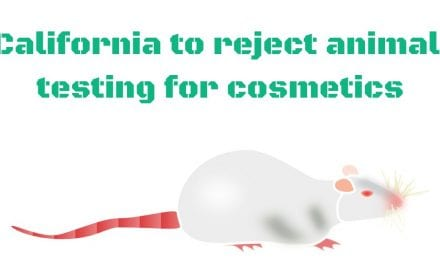 California to reject animal testing for cosmetics
