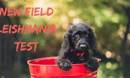 New Field Leishmania Test