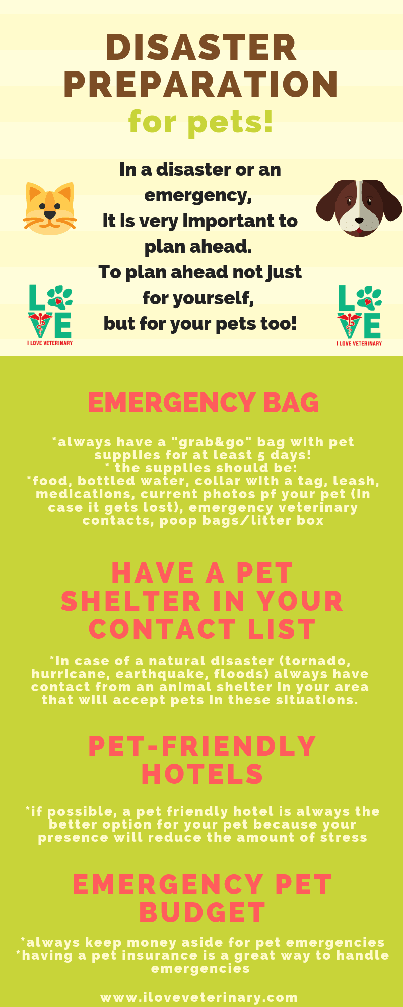 Disaster preparation for pets infographic