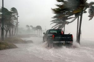truck in the middle of a hurricane. As we are getting ready for hurricane Florence, we decided to inform you about all local emergency contacts and local pet-friendly shelters that you might need so you can prepare your pets for hurricane Florence.