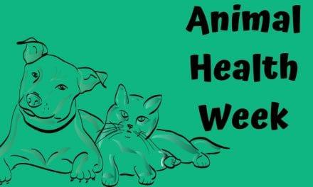 Animal Health Week – Sep. 30 – Oct. 06