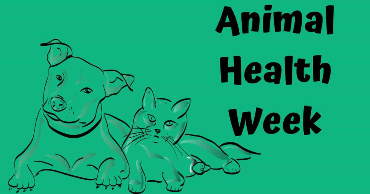 Animal Health Week – Sep. 30 – Oct. 06