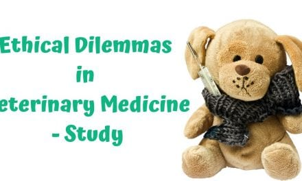 Ethical Dilemmas in Veterinary Medicine – Study