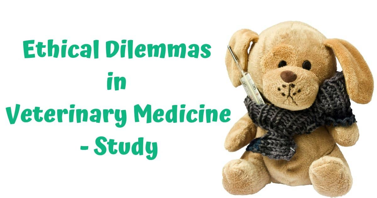 Ethical Dilemmas in Veterinary Medicine – Study