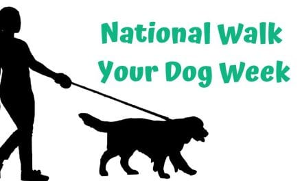 National Walk Your Dog Week – 7-13 October