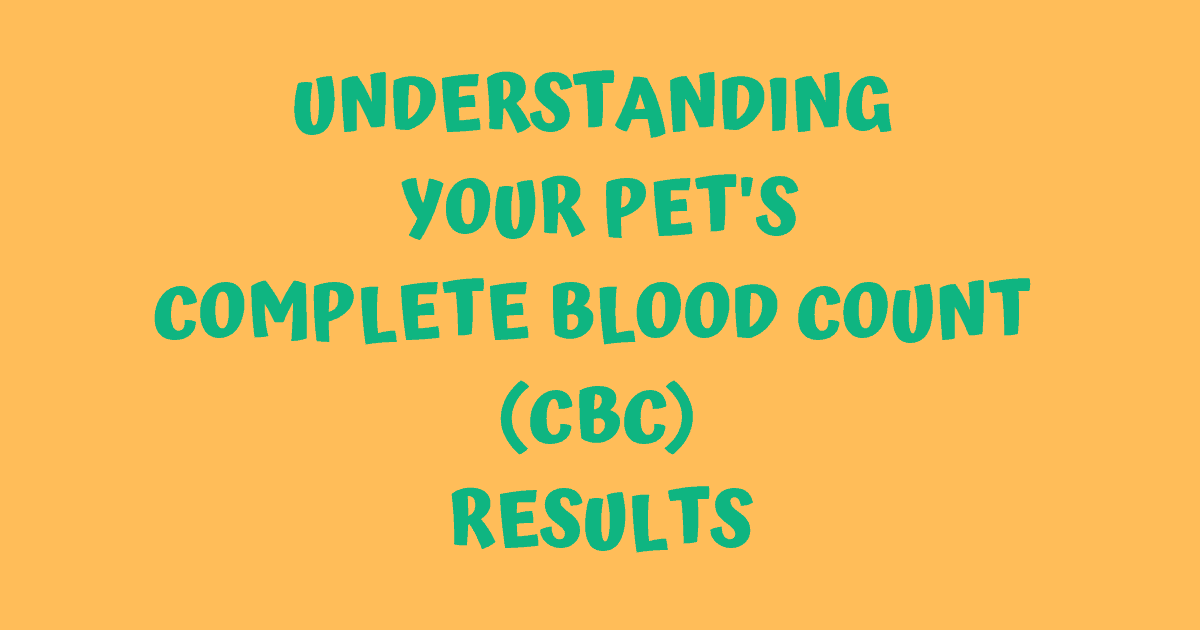 Understanding your pet's CBC results