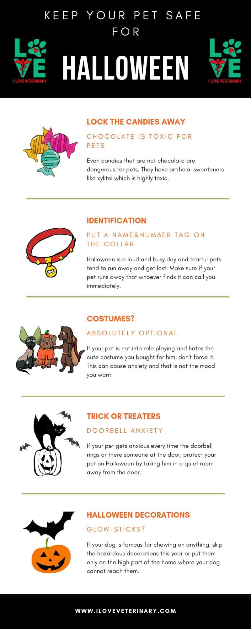 Keep your pet safe for Halloween