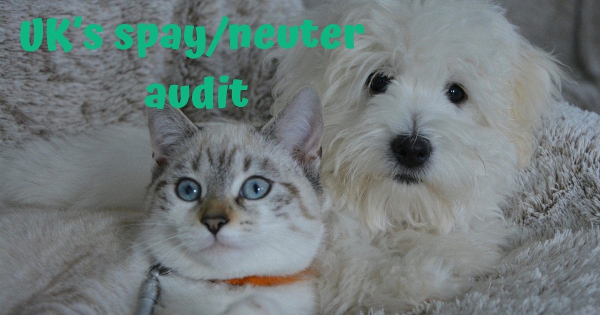 UK's spay/neuter audit