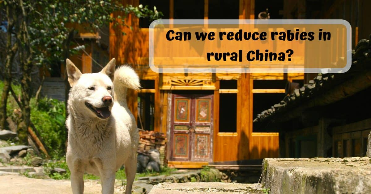 Can we reduce rabies in rural China?