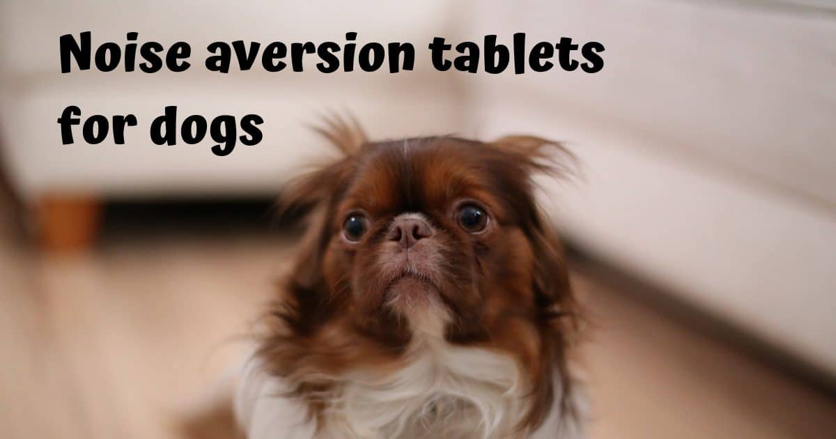 Noise aversion tablets for dogs