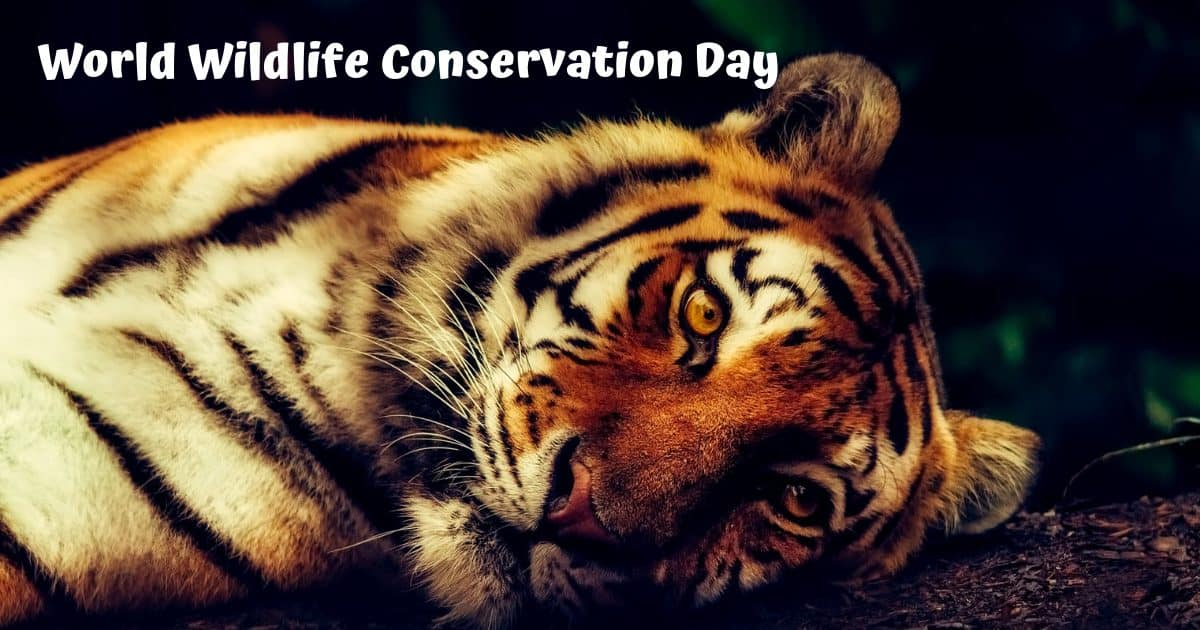 World Wildlife Conservation Day – 04.12