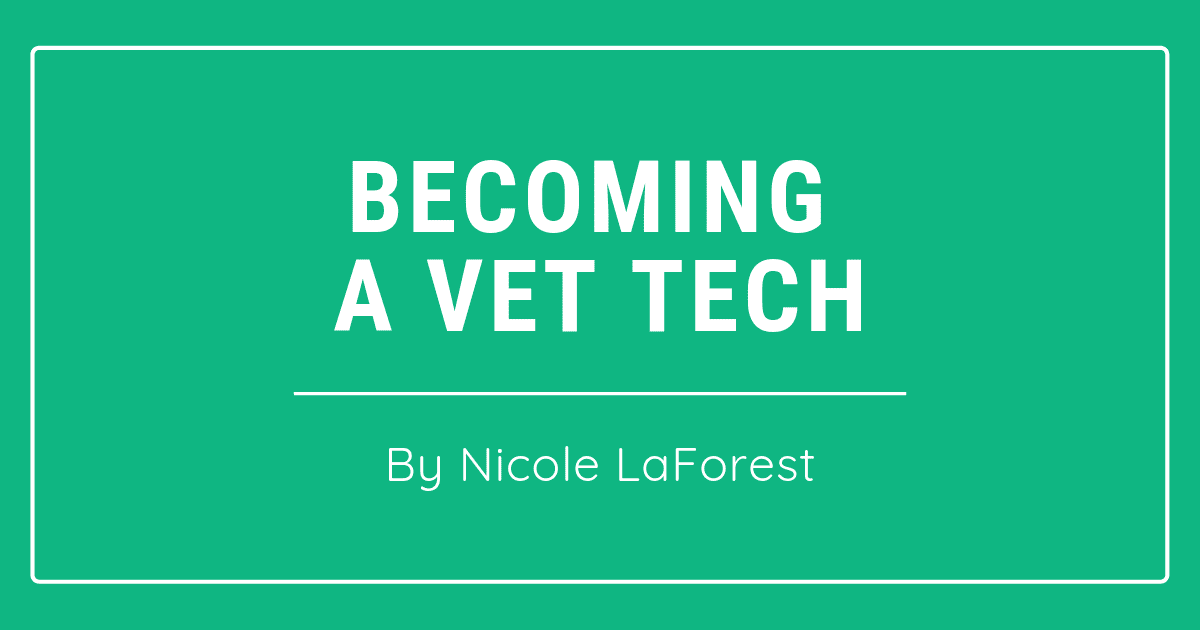 Becoming A Veterinary Technician – By Nicole LaForest