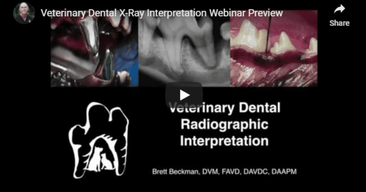 Veterinary Dental X-Rays – Video by Dr. Brett Beckman