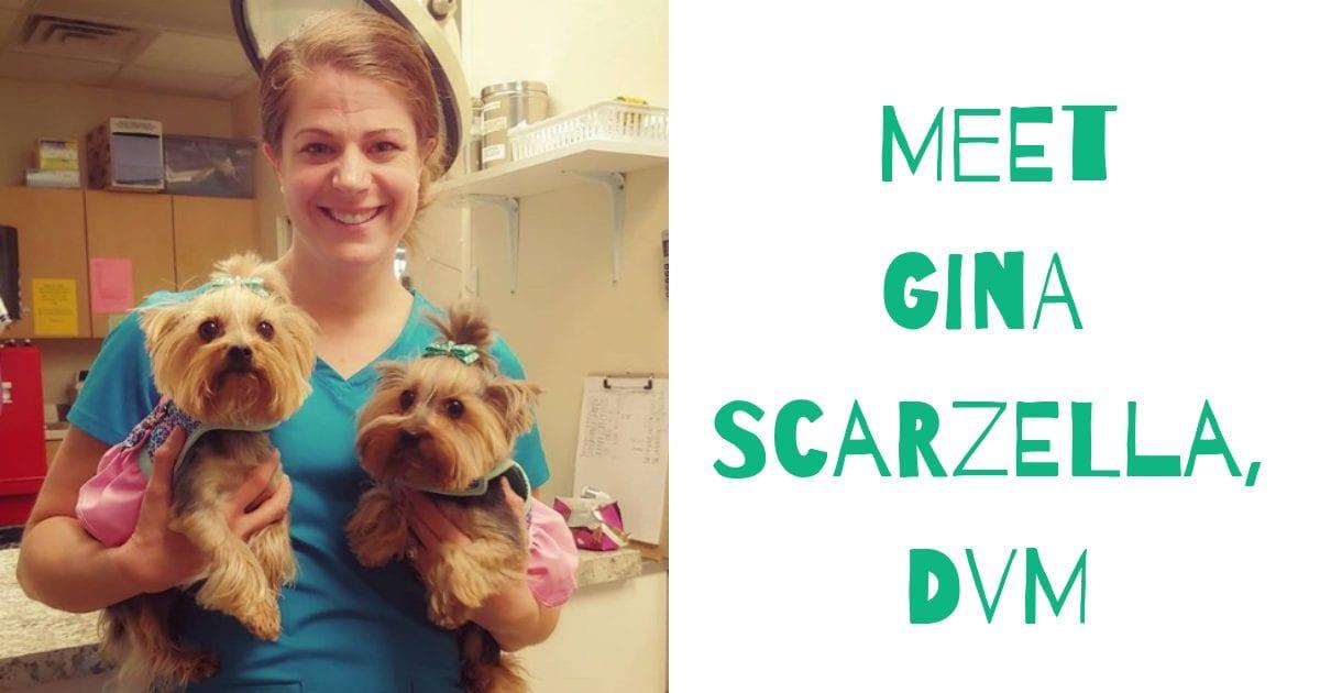 Gina Scarzella, DVM