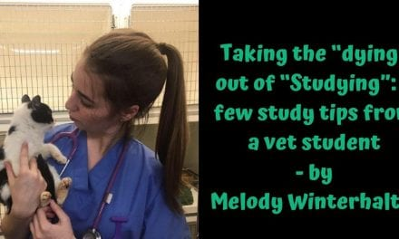 """Taking the """"dying"""" out of """"Studying"""": a few study tips from a vet student – by Melody Winterhalter"""