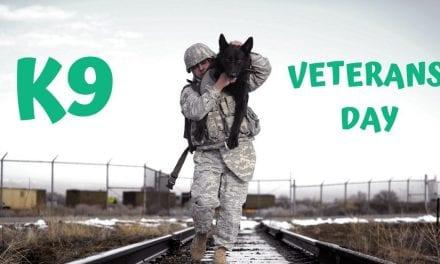 K9 Veterans Day – March 13