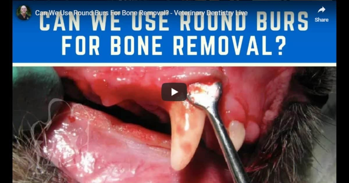 Round Burs For Bone Removal
