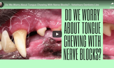 Tongue Chewing With Nerve Blocks – Video by Dr. Brett Beckman