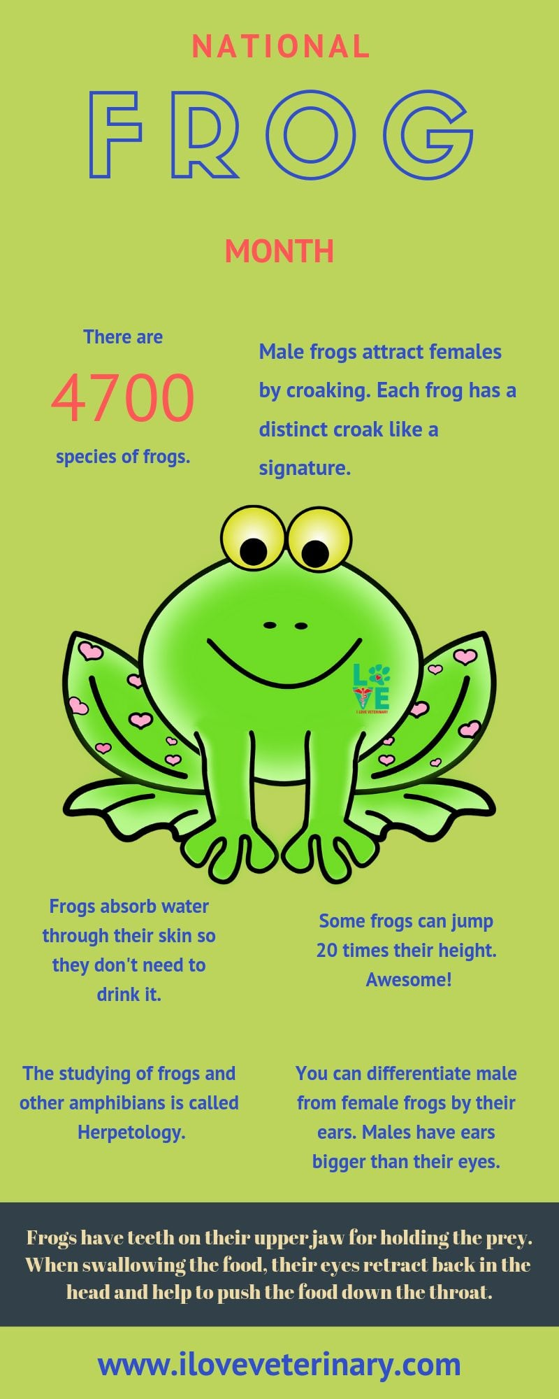 national frog month infographic