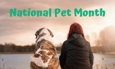 National Pet Month – May