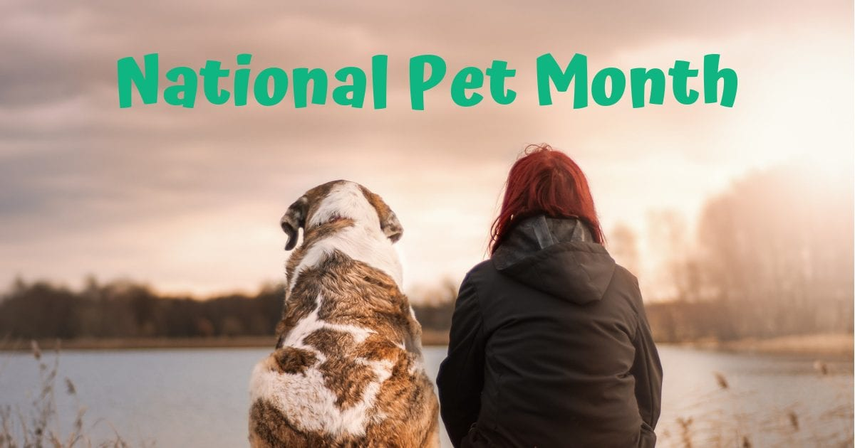 National Pet Month – May 2019