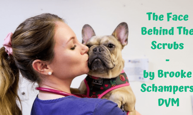 The Face Behind The Scrubs – by Brooke Schampers BSc