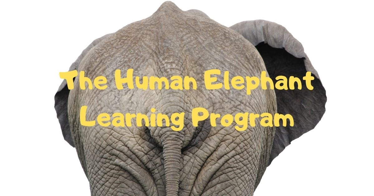 The Human Elephant Learning Program