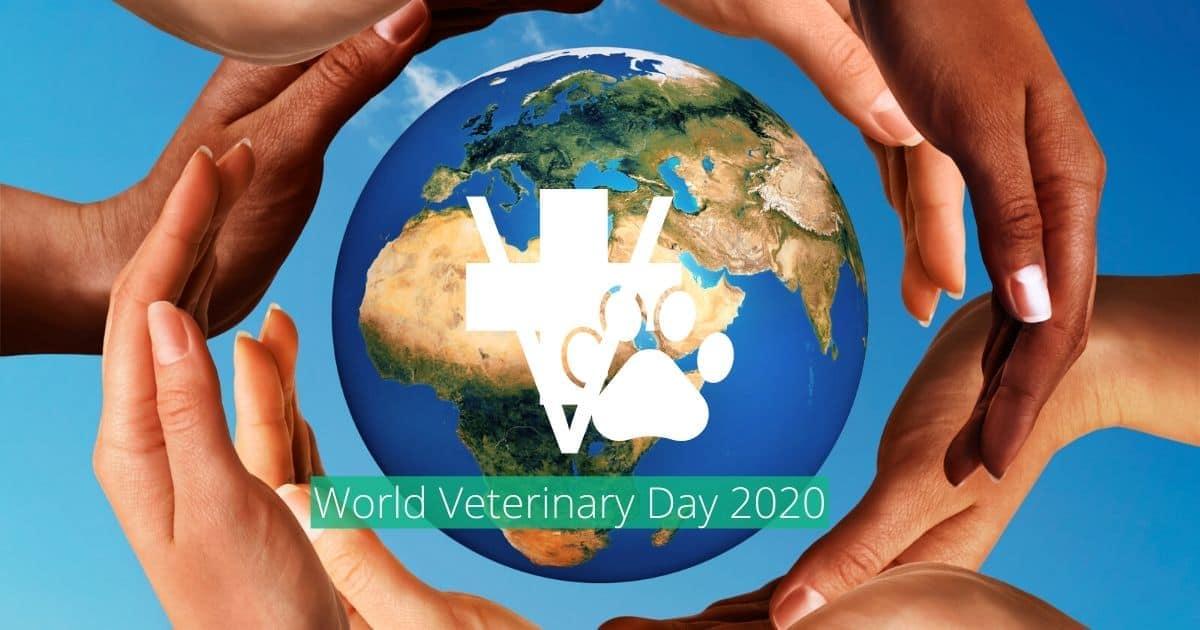 World Veterinary Day 2020 I Love Veterinary