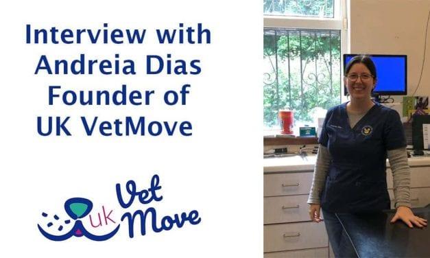 Interview with Andreia Dias founder of UK VetMove