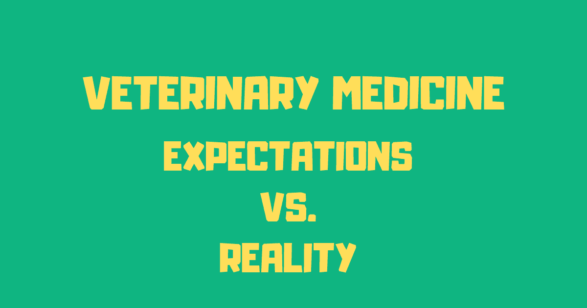 Veterinary Medicine: expectation vs. reality