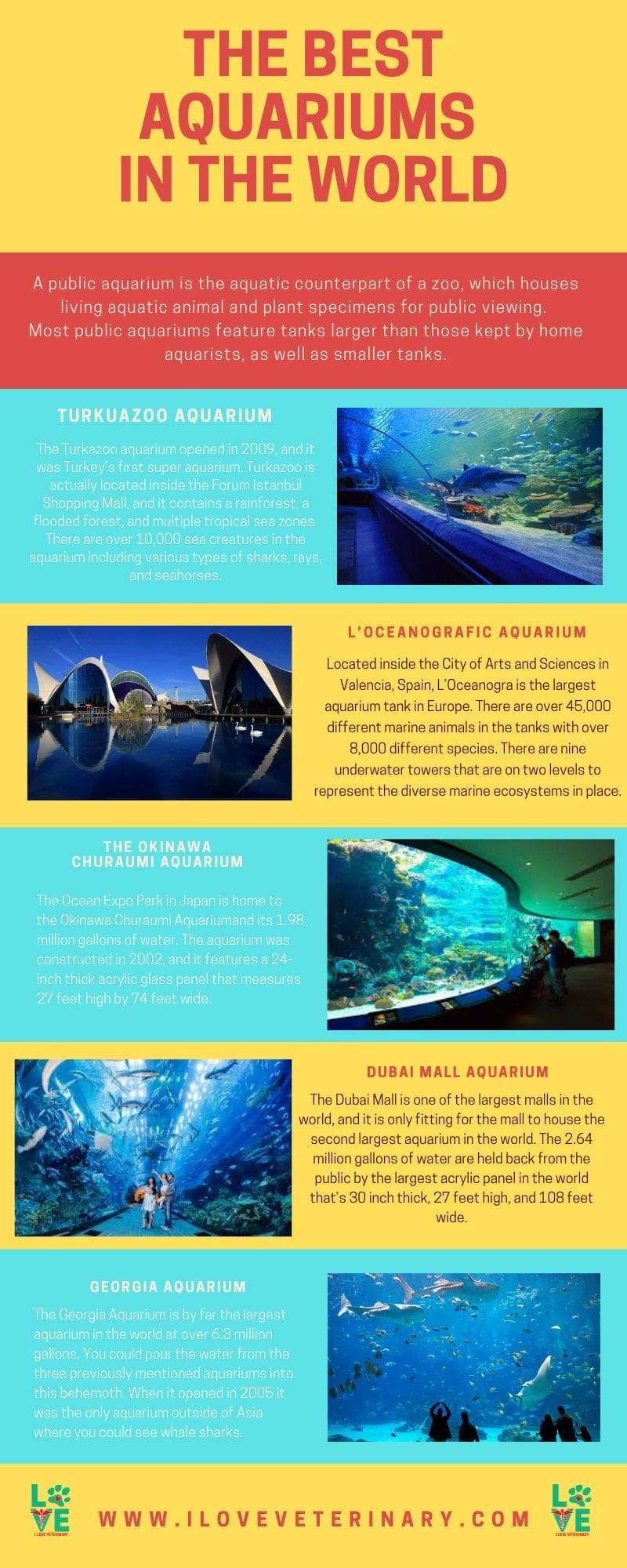 THE BEST AQUARIUMS IN THE WORLD