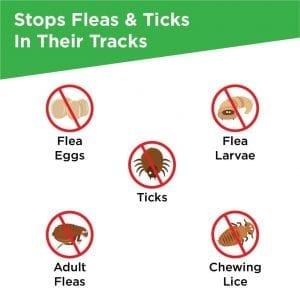 frontline plus for cts stops fleas ticks