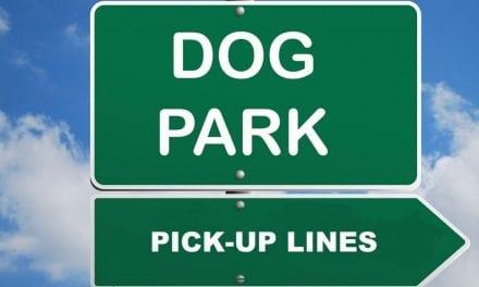 Dog park pick-up lines