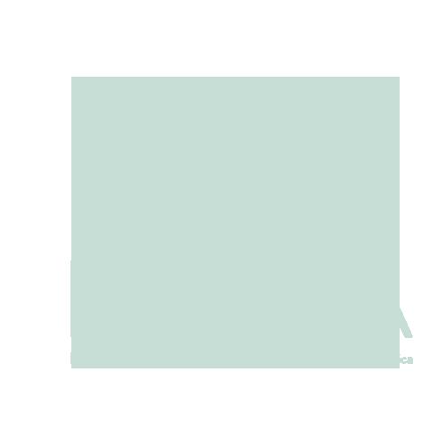 navta logo I Love Veterinary - Blog for Veterinarians, Vet Techs, Students